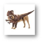 family Halloween Costumes Dino Dog 1