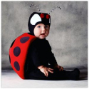 halloween infant costumes tom arma ladybug