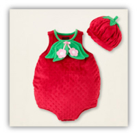 newborn halloween costumes strawberry