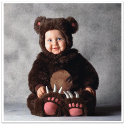tom arma halloween costumes brown bear