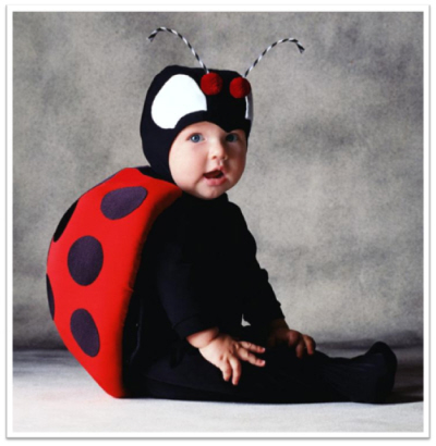 tom arma halloween costumes ladybug  sc 1 st  The Essential Infant Resource for Moms. & Transform Tom Arma Halloween Costumes into Nursery Art